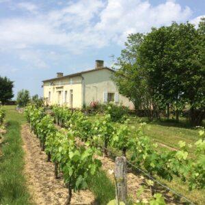 CLP le château vu des vignes dites le château.JPG